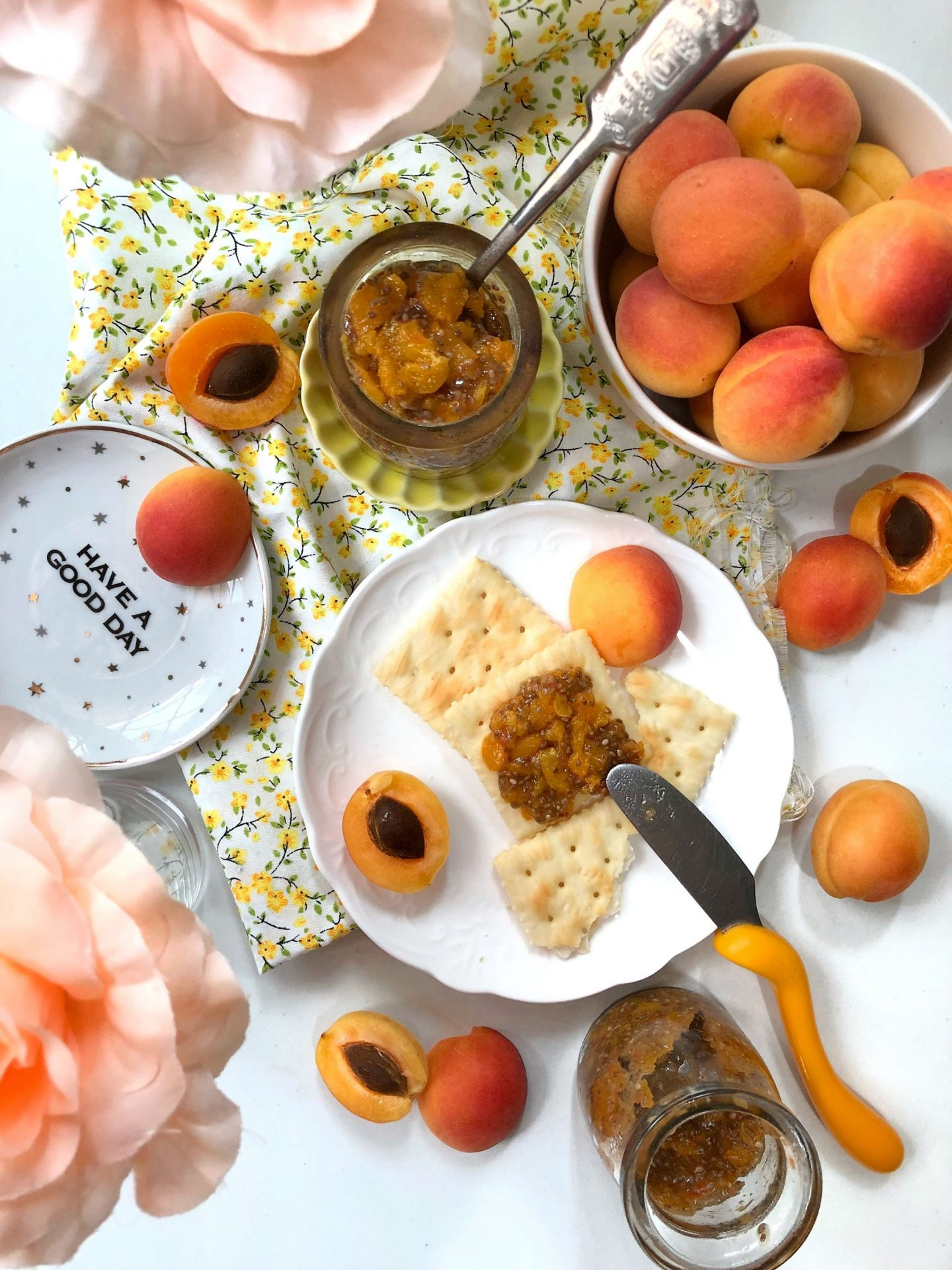 Apricot Chia Jam on Crackers